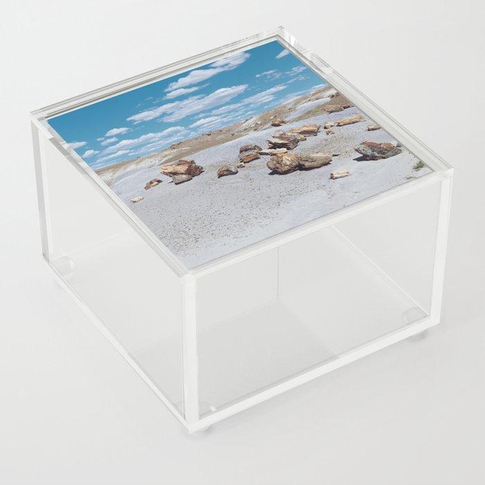 Arizona Petrified Wood Acrylic Box