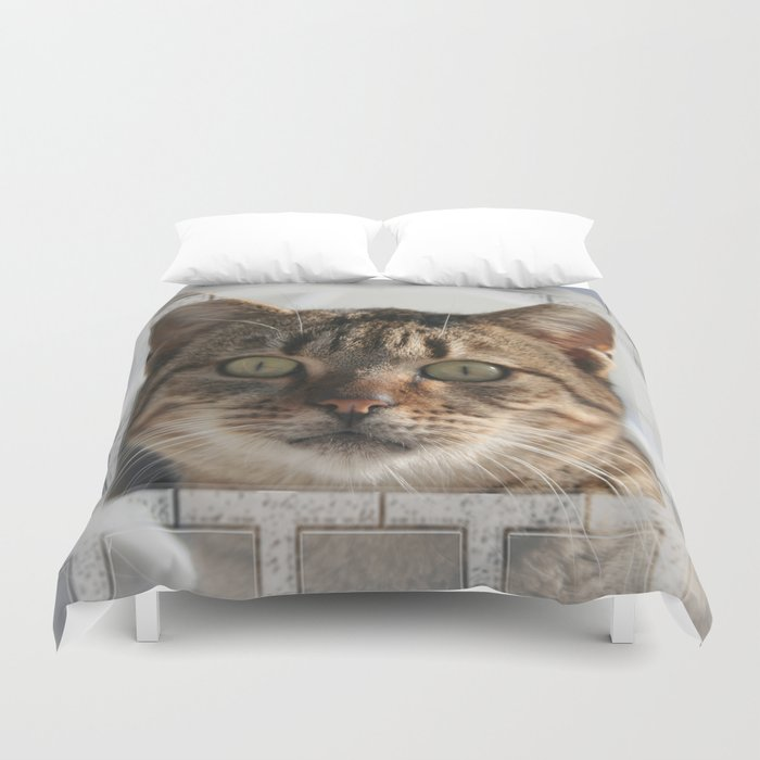 Beautiful Eyed Tabby Cat  Duvet Cover