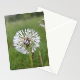 Keystone Dandelion Stationery Cards
