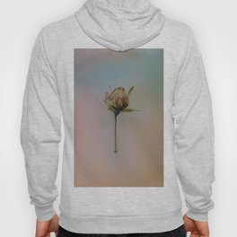 Once Upon a Time a Dancer Rose Hoody