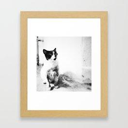 The Fighter Framed Art Print