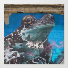 teal frog Canvas Print
