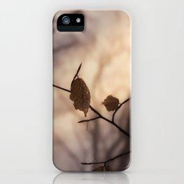 The Last Light iPhone Case