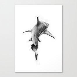 Shark II Canvas Print