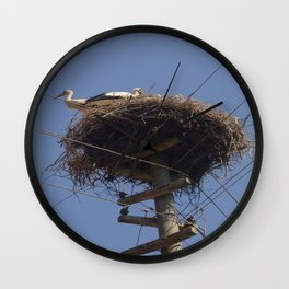 Storks on Electric Pylon  Wall Clock