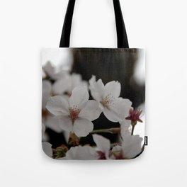 Sakura blossoms up close Tote Bag