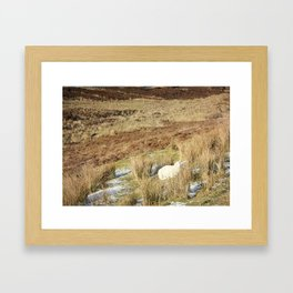 Shades of Brown Framed Art Print
