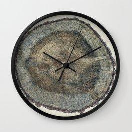 Stump Rings Wall Clock
