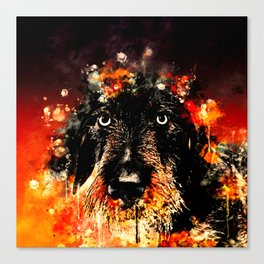 wire haired dachshund dog ws Canvas Print