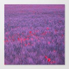 purple poppy field I Canvas Print
