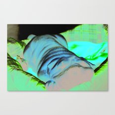 The Towel Canvas Print