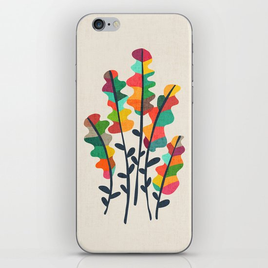 Flower from the meadow iPhone & iPod Skin
