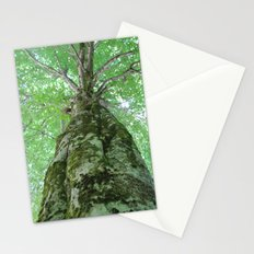 old growth tree Stationery Cards