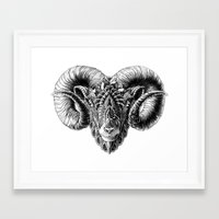bioworkz Framed Art Prints featuring Ram Head by BIOWORKZ
