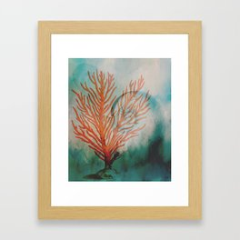 Gifts from the Sea Framed Art Print