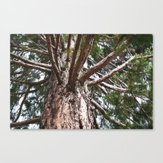 My View-Tree Canvas Print