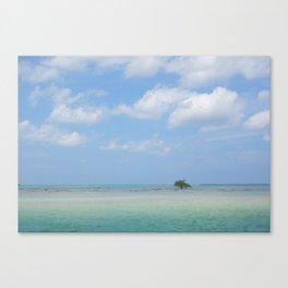 Lone Tree in Paradise Island Canvas Print