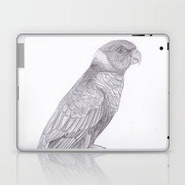 Lorikeets Bird drawing Laptop & iPad Skin