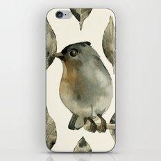 Grey Birdy iPhone & iPod Skin