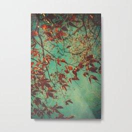 Autumn Beech Tree Metal Print