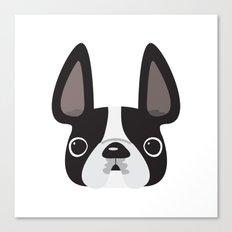 Black Pied w/ White Markings Frenchie Canvas Print