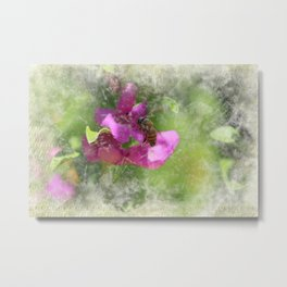 Bee on Texas Ranger Blossom Antiqued and Aged Metal Print