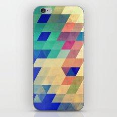 dyrzy iPhone Skin