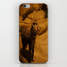 Wild Cat iPhone & iPod Skin