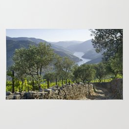 A rustic track in the Douro Rug