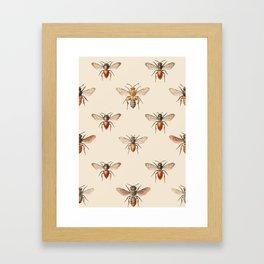Vintage Bee Illustration Pattern Framed Art Print
