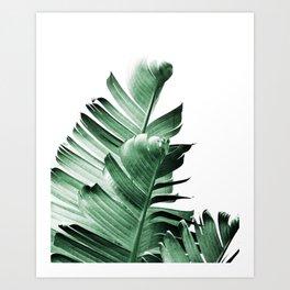 Banana leaf, Plant, Green, Minimal, Trendy decor, Interior, Wall art, Photo Art Print Art Print