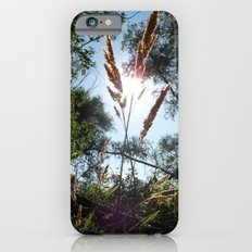 Another Season Passes By Slim Case iPhone 6s