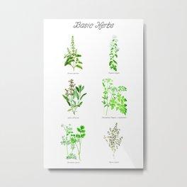 Basic Herbs Metal Print