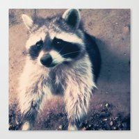 racoon Canvas Prints featuring racoon by oslacrimale