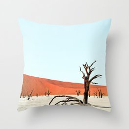 Deadvlei VI Throw Pillow
