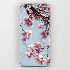 Spring 4 iPhone & iPod Skin