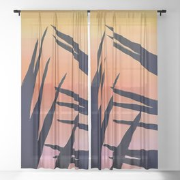 Sunset behind the yucca Sheer Curtain