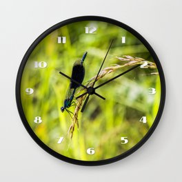 Banded Demoiselle Wall Clock