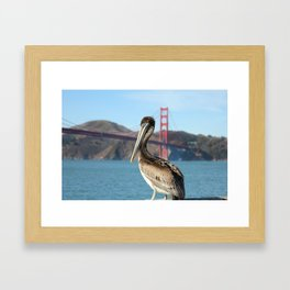 Pelican Perch Under the Golden Gate Framed Art Print