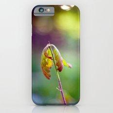 Baby Oak iPhone 6s Slim Case