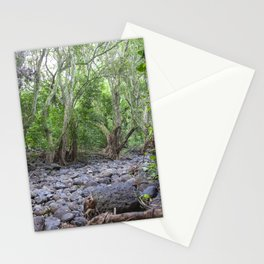 river lava rock Stationery Cards