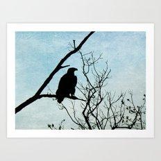 Eagle Waiting Art Print
