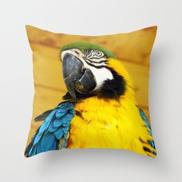 Exotic Blue and Yellow Macaw Parrot Throw Pillow