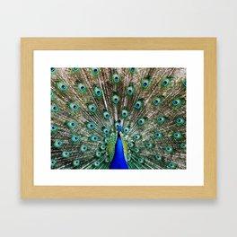 Vibrant Display Framed Art Print