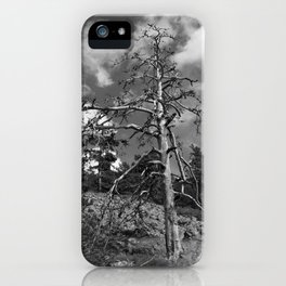 Resistance iPhone Case