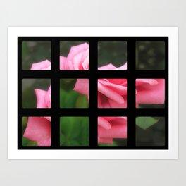 Pink Roses in Anzures 4 Art Rectangles 2 Art Print