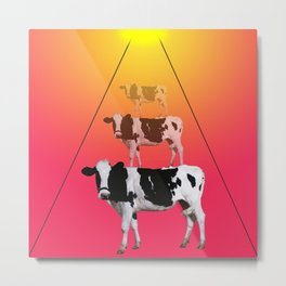 Attracted cow Metal Print