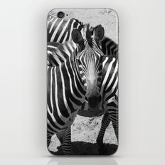 ~Zebra Stripes~ iPhone & iPod Skin