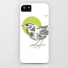Bush Wren Xenicus Longipes iPhone (5, 5s) Slim Case