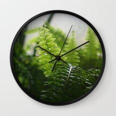Photosynthesis Wall Clock